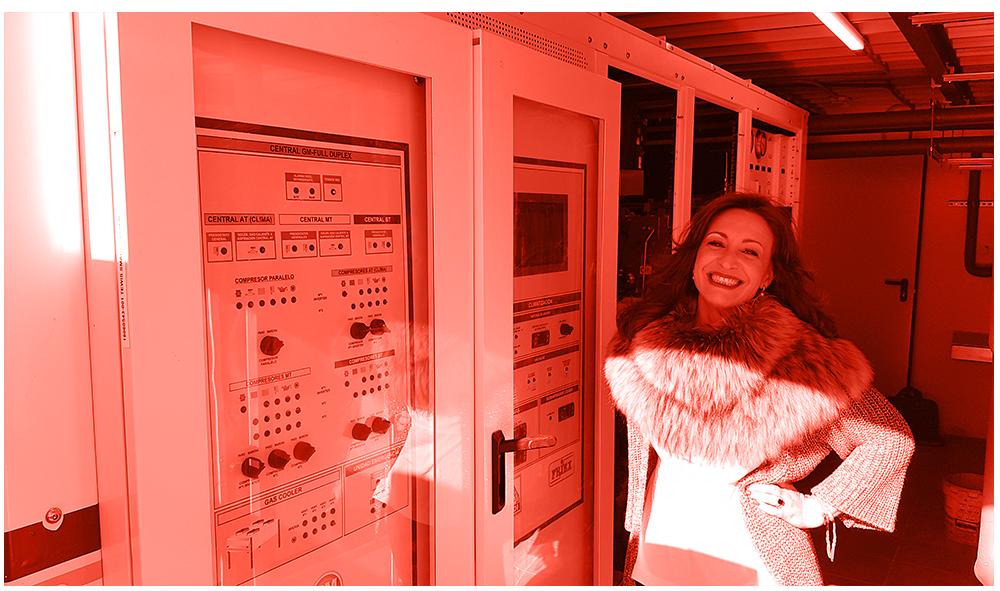 Friex.-Refrigeración-y-Climatización-para-el-sector-retail